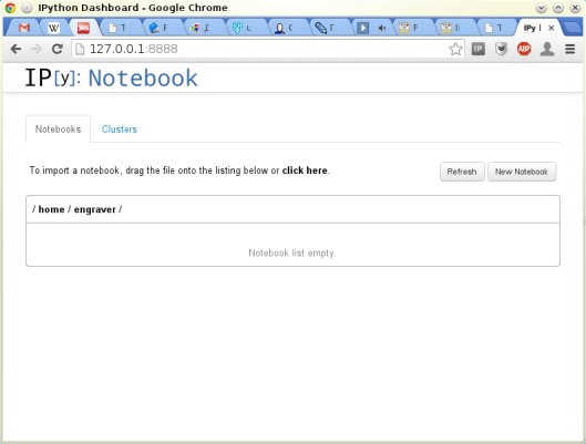 IPython notebook empty screen